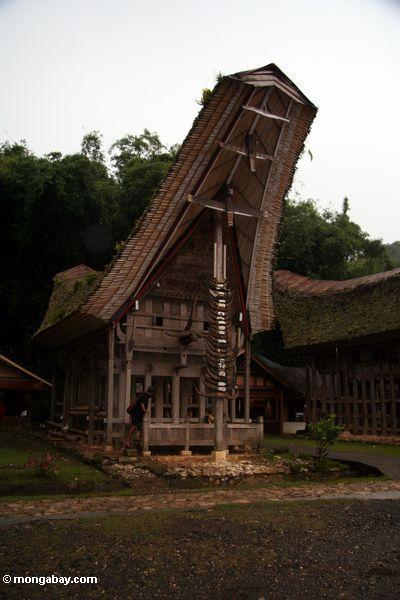 Tradtional Toraja house at Ketu Kese (Toraja Land (Torajaland), Sulawesi)