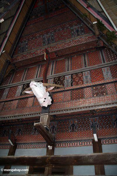 Intricately carved and painted Toraja house in Ketu Kese (Toraja Land (Torajaland), Sulawesi)