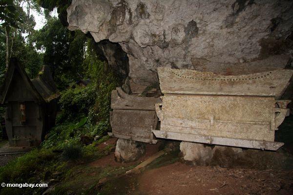 Stone coffins at Ketu Kese (Toraja Land (Torajaland), Sulawesi)