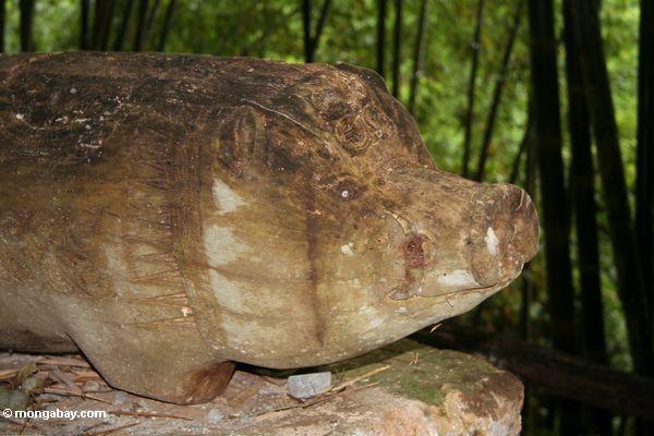 Wooden coffin carved in the shape of a pig (Toraja Land (Torajaland), Sulawesi)