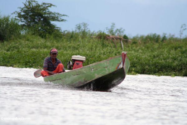 Man driving boat on Lake Tempe (Sulawesi - Celebes)