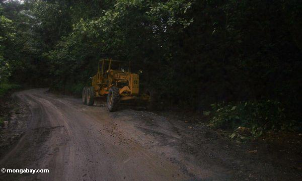 Tractor on road in rainforest (Sulawesi - Celebes)