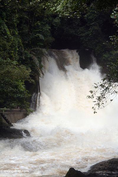 Bantimurung falls (Sulawesi - Celebes) -- sulawesi7843