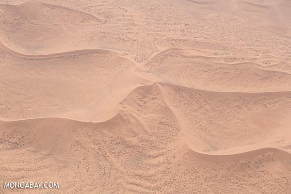 Namibian desert