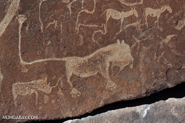 Rock carvings at Twyfelfontein
