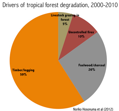 pie chart showing causes of tropical degradation