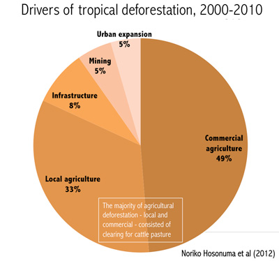 pie chart showing causes of tropical deforestation / drivers of rain forest destruction