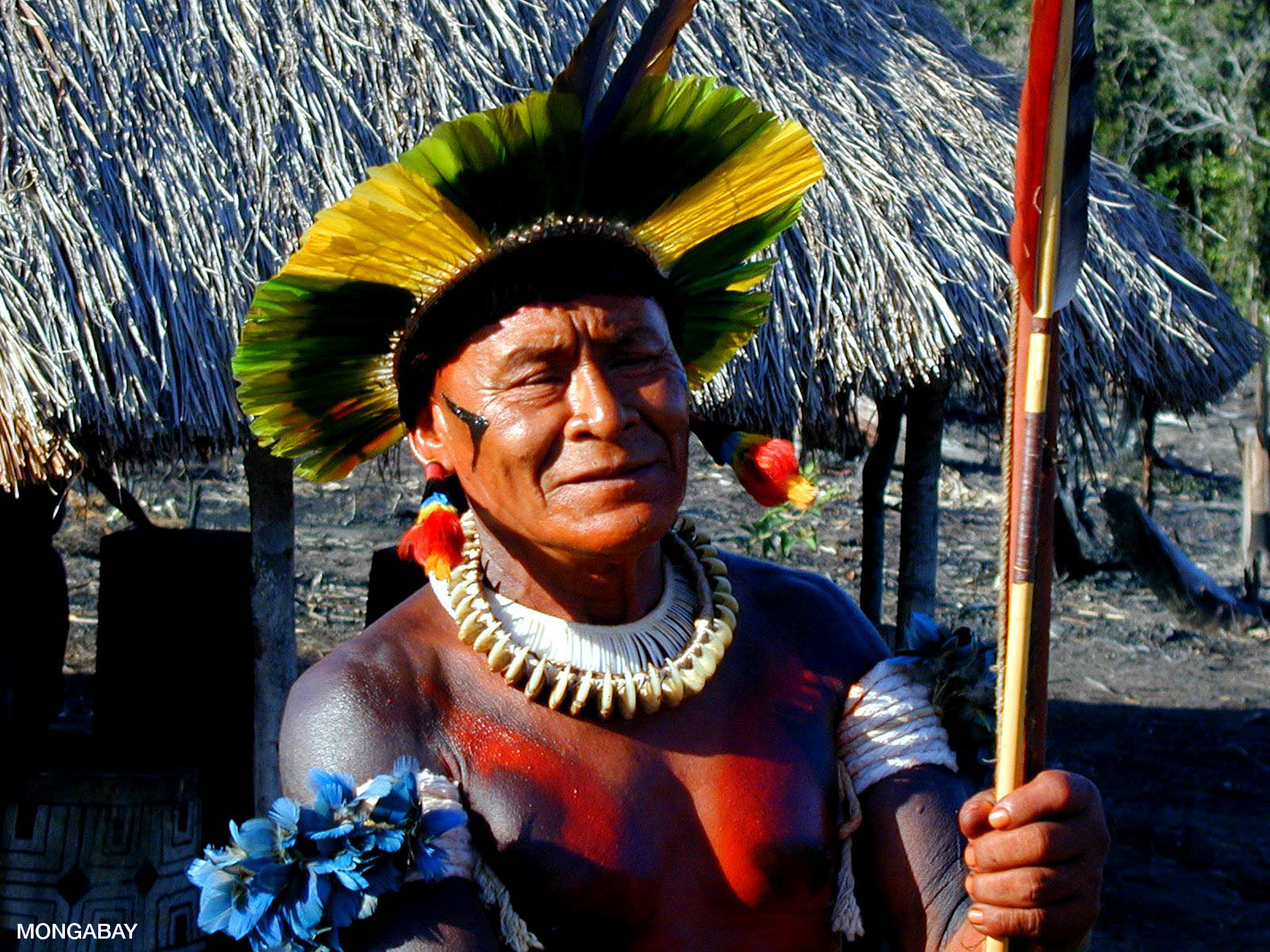 People In The Amazon Rainforest
