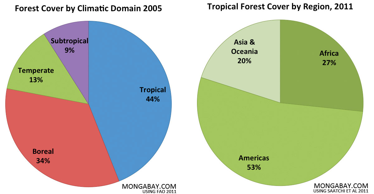 Forest cover by climatic domain.