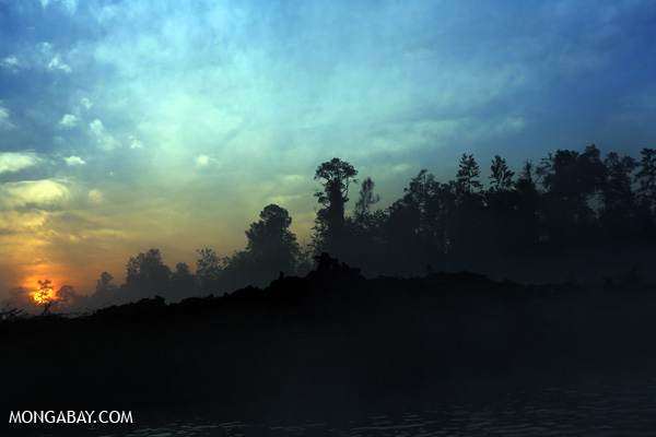 Sunset over a deforested area