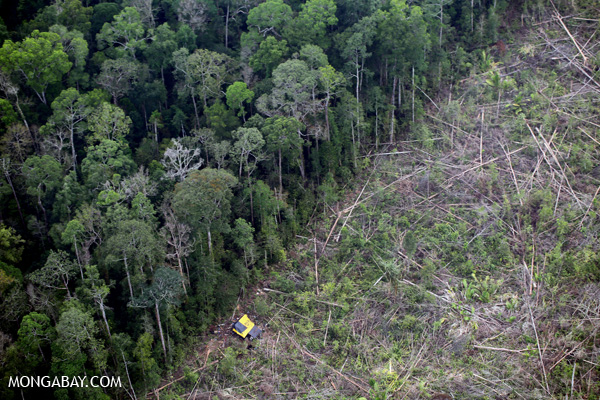 Deforestation in Sumatra, one of the global deforestation hotspots. Photo by: Rhett A. Butler.