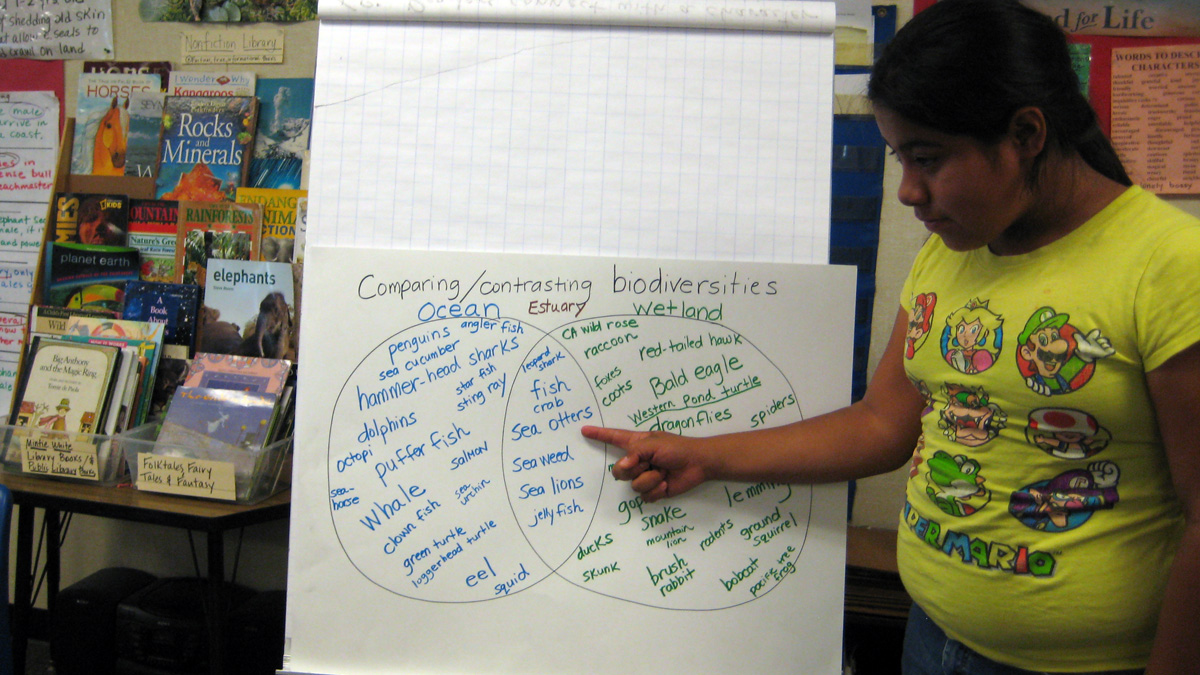 Activity 2 Comparing And Contrasting Biodiversities Environmental Venn Diagram For Smartboard With A