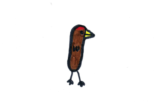 Acorn Woodpecker student example