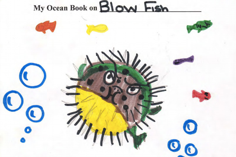 Blowfish book
