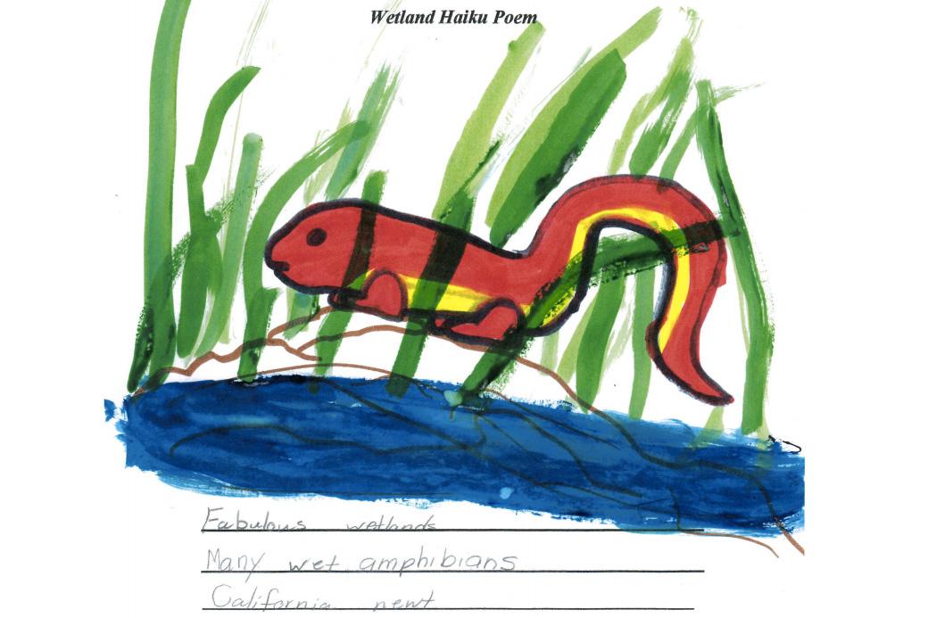 Student sample: newt haiku