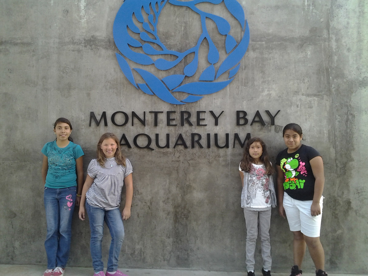 Take Action Activity: Field trip to the Monterey Bay Aquarium