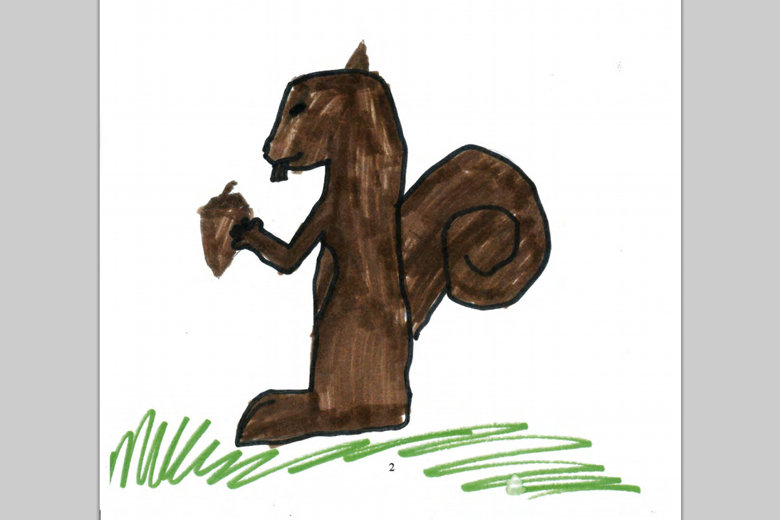 Squirrel book