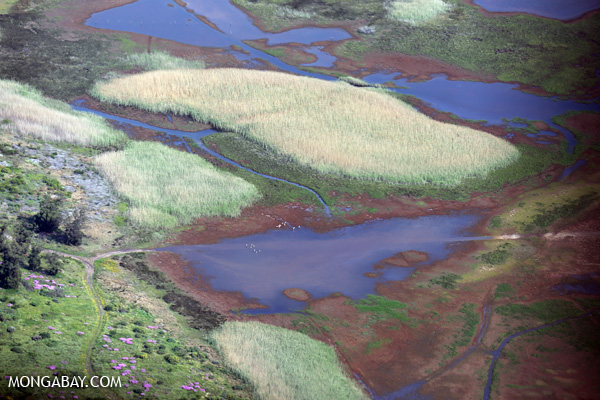 Wetlands in South Africa