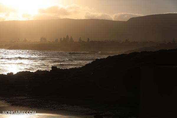 Sunset near Hermanus [south_africa_hermanus_1322]