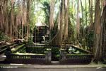 Hindu Temple with hanging tree roots (Ubud, Bali)