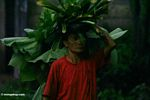 Elderly Balinese woman carrying a stack of leaves on her head (Ubud, Bali)