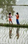 Two girls in a rice paddy (Ubud, Bali)