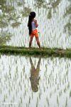 Girl in a rice field (Ubud, Bali)