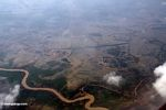 Aerial view of rice paddies where mangrove forests oncee grew (Java)