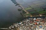Overhead view of shrimp aquaculture in Java (Java)