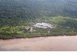 Mangrove-clearing in Borneo (Kalimantan, Borneo - Indonesian Borneo)