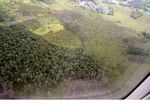 View from airplane of forest clearing around Pangkalanbun (Kalimantan, Borneo - Indonesian Borneo)
