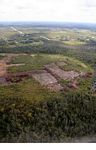 Aerial view of forest clearing for agriculture near Pangkalanbun (Kalimantan, Borneo - Indonesian Borneo)