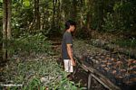 Villager employed at the reforestation project in Tanjung Puting National Park (Kalimantan, Borneo - Indonesian Borneo)
