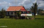 Sulawesi home outside of Makassar (Sulawesi - Celebes)