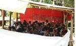 Toraja land wedding (Toraja Land (Torajaland), Sulawesi)