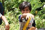 Young boy reaching for bubble (Toraja Land (Torajaland), Sulawesi)