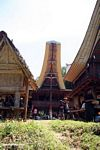 Typical Tongkonan house (Toraja Land (Torajaland), Sulawesi)