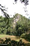 Distant view of cliff tombs at Londa Nanggala (Toraja Land (Torajaland), Sulawesi)