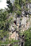 Tombs in cliffs at Londa Nanggala (Toraja Land (Torajaland), Sulawesi) -- sulawesi6946