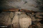 Coffins in cave at Londa Nanggala (Toraja Land (Torajaland), Sulawesi)