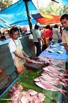 Fish market in Rantepao (Toraja Land (Torajaland), Sulawesi)