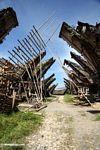 Houses of Palawa, a traditional village in Torajaland  (Toraja Land (Torajaland), Sulawesi)