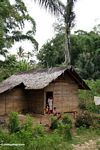 Mother with kids in doorway of house near Tikala (Toraja Land (Torajaland), Sulawesi)