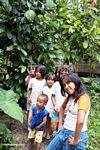 Children in Tikala (Toraja Land (Torajaland), Sulawesi) -- sulawesi7329