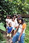Children in Tikala (Toraja Land (Torajaland), Sulawesi) -- sulawesi7330
