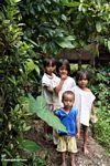Children in Tikala (Toraja Land (Torajaland), Sulawesi) -- sulawesi7333