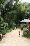 Little boys in Tikala (Toraja Land (Torajaland), Sulawesi)