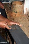 Man carving wood souvenirs at Ketu Kese (Toraja Land (Torajaland), Sulawesi) -- sulawesi7390
