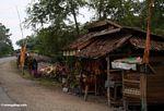 Roadside stall (Sulawesi - Celebes)