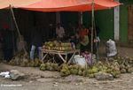 Durian fruit for sale at roadside stall (Sulawesi - Celebes)
